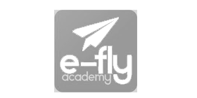Logo e-fly